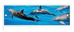 Экран п/в  Ультра легкий  АРТ 1,48 (Дельфины) - фото 6561
