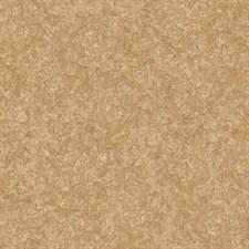 Линолеум Start Coral 2077 - 2,5 м /1,9 мм