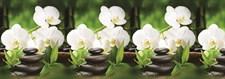 Интерьерная панель  Белая орхидея  3000х600 мм (1)
