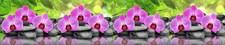 Фартук кухонный  АБС Орхидеи 1,5х600х3000мм (1,8м2)