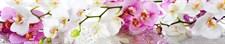 Фартук кухонный АБС  Розовое утро 1,5х600х3000мм (1,8м2) (№17)