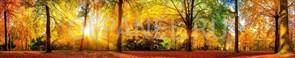 Фартук кухонный АБС Осень в лесу 1,5х600х3000мм (1,8м2) №10