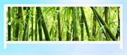 Экран для ванной 1,5 бамбук Ультра легкий АРТ